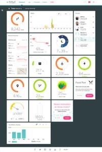 Fitbit, úvodní obrazovka, dashboard